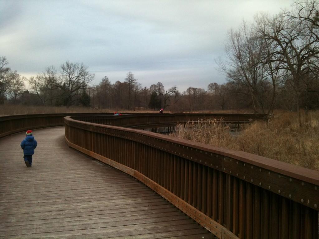 bridge by the ice rink